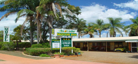 Avocado Motor Inn - South Australia Travel