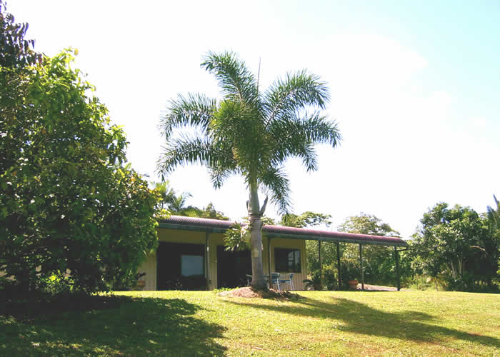 Daintree Mountain View Retreat and Vanilla Beans - South Australia Travel