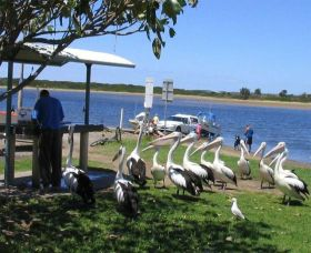 Mountain View Caravan and Mobile Home Village - South Australia Travel