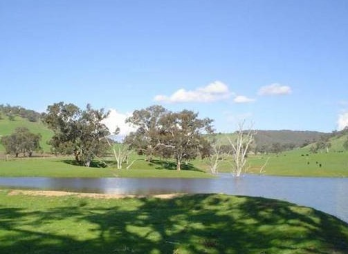 Hillview Farmstay - South Australia Travel