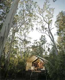 Paperbark Camp - South Australia Travel