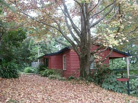 Turkeys Nest Rainforest Cottage - South Australia Travel