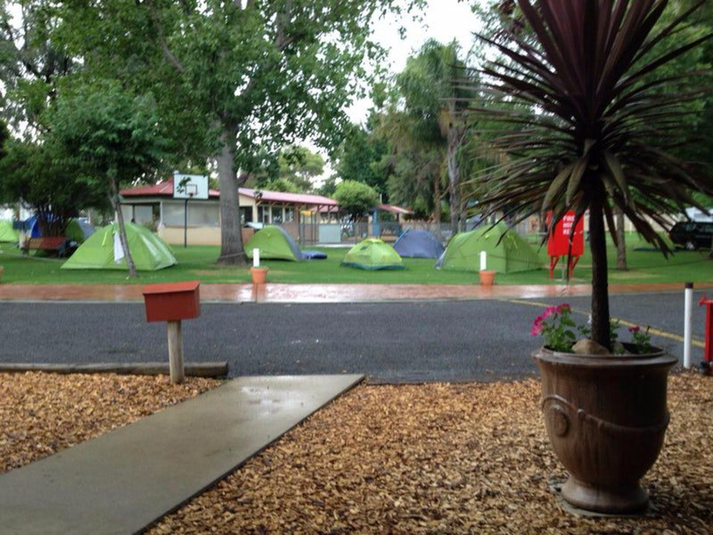 Young Caravan Tourist Park - South Australia Travel