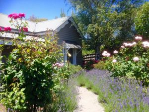 Valley View Cottage - South Australia Travel