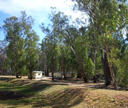 Balranald Caravan Park - South Australia Travel