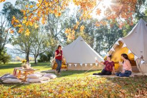 Valley View Glamping - South Australia Travel