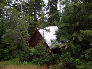 Turkeys Nest Rainforest Cottages Mt Glorious - South Australia Travel