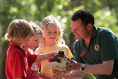 Cleland Wildlife Park - South Australia Travel