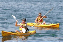 Manly Kayaks - South Australia Travel