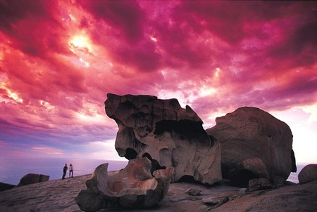 Kangaroo Island Adventure Tour 2 day/1 night - South Australia Travel