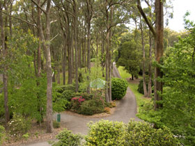 Mount Lofty Botanic Garden - South Australia Travel