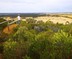 Archer Drive Scenic Drive and Lookout - South Australia Travel