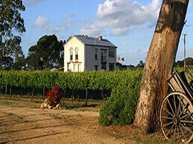 Highbank Vineyards - South Australia Travel