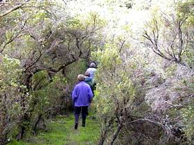 Jack And Hilda McArthur Walk - South Australia Travel