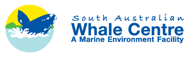 South Australian Whale Centre - South Australia Travel