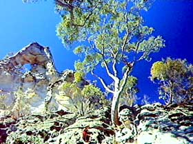 Mount Moffatt Section - Carnarvon National Park - South Australia Travel