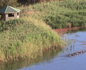 Spring Creek Bird Hide - South Australia Travel