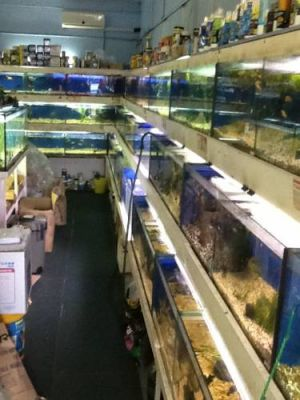 Clearwater Aquariums - South Australia Travel