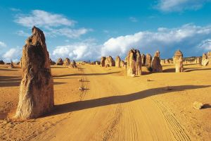 Pinnacles Desert Koalas and Sandboarding 4WD Day Tour from Perth - South Australia Travel