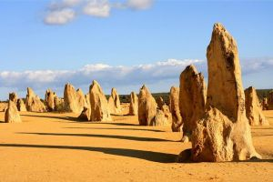 Pinnacles and Yanchep National Park Day Trip from Perth Including Lobster Shack Lunch and Sandboarding - South Australia Travel