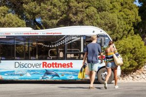 Rottnest Island Tour from Perth or Fremantle including Bus Tour - South Australia Travel