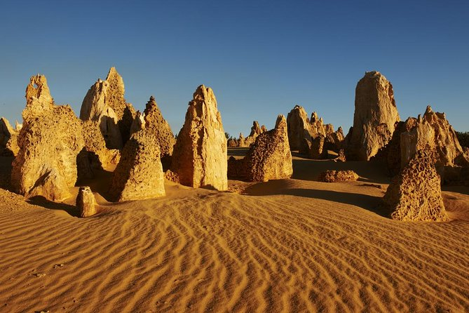Pinnacles Day Trip from Perth Including Yanchep National Park - South Australia Travel