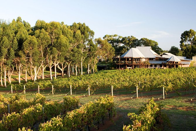 Margaret River and Geographe Bay Region Day Trip from Perth - South Australia Travel