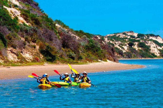 Half-Day Kayaking Tour in Coorong National Park - South Australia Travel