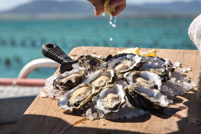 Pure Coffin Bay Oysters - Short and Sweet Oyster Farm Tour - South Australia Travel