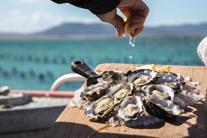 Pure Coffin Bay Oysters - Oyster Farm and Bay Tour - South Australia Travel