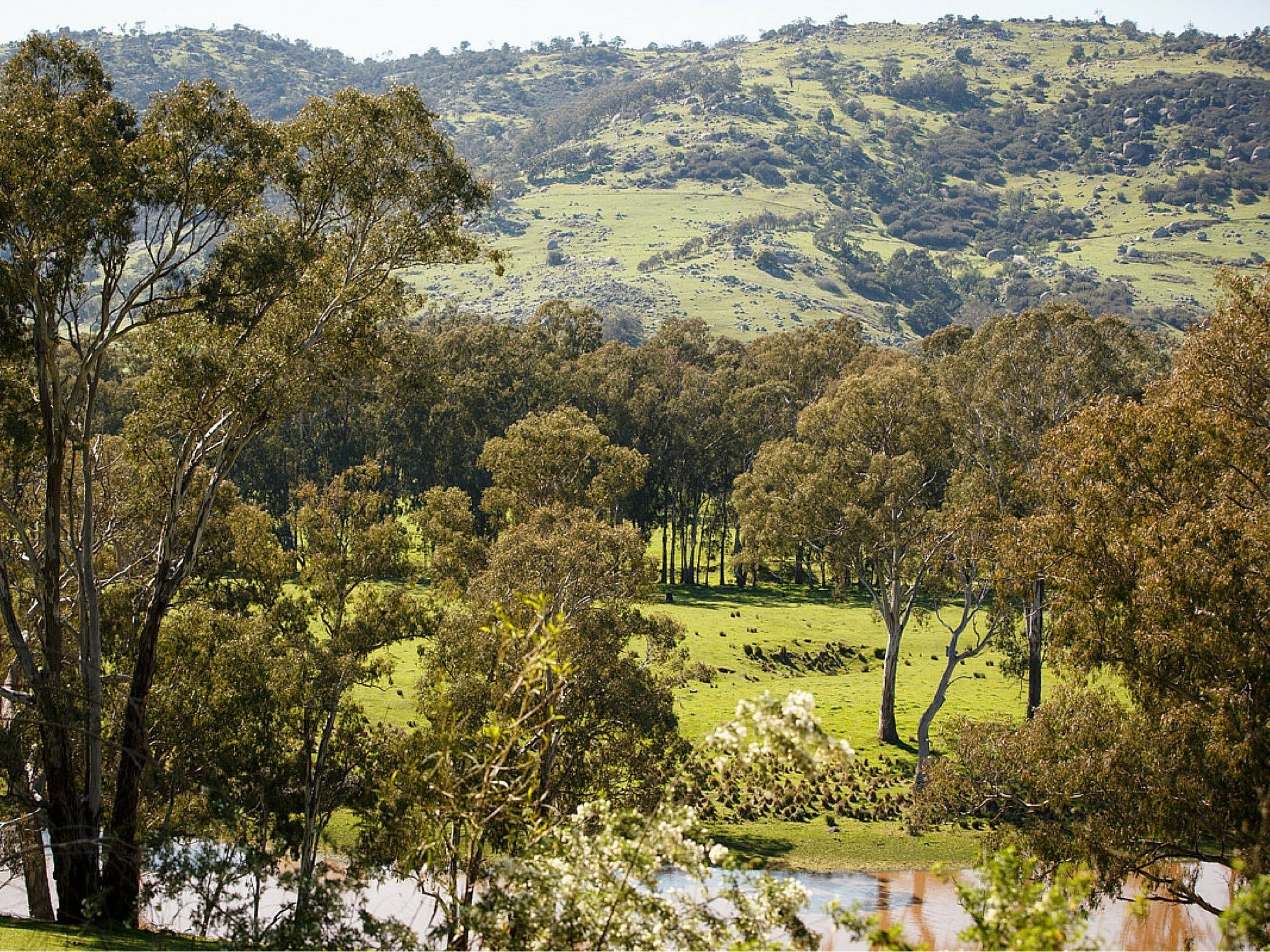 Trawool Valley - South Australia Travel