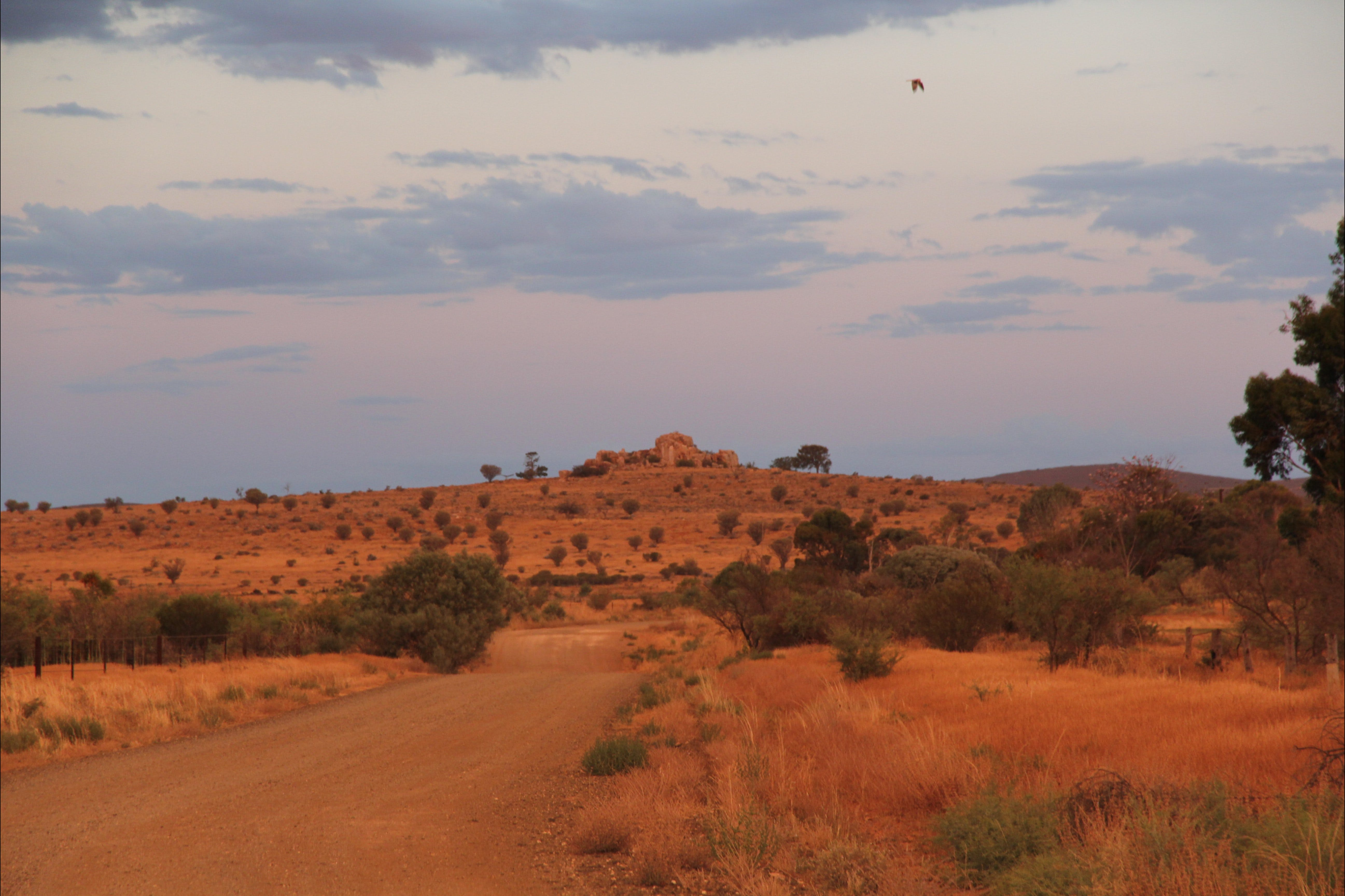 Castle Rock walk and Lookout - South Australia Travel