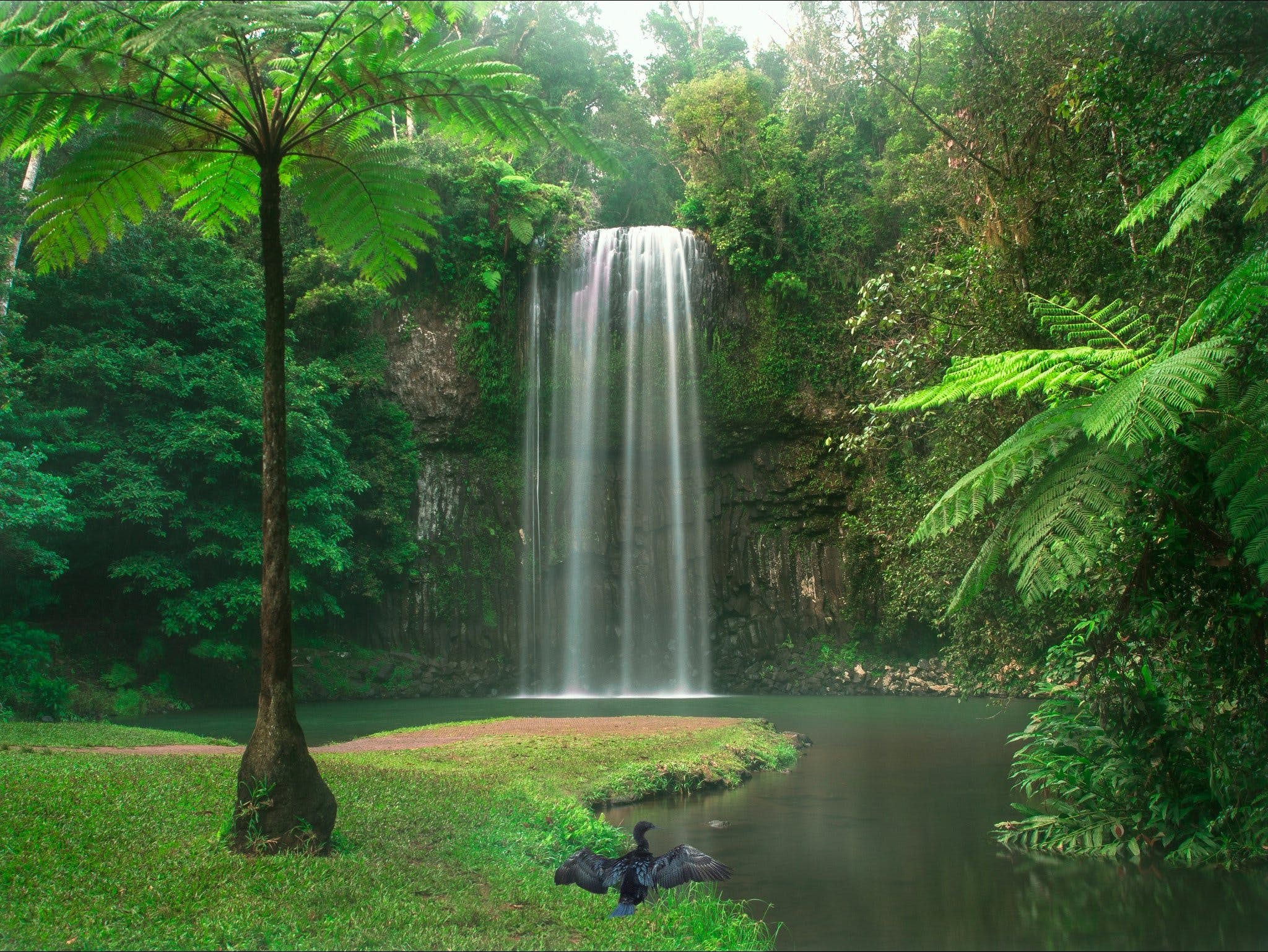 Atherton Tablelands - South Australia Travel