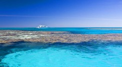 Reef Jet Cruises - South Australia Travel