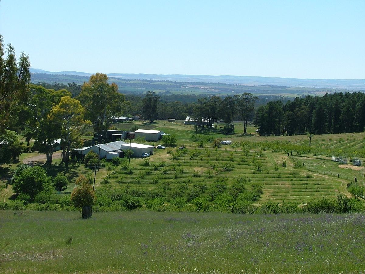 Taralee Orchards - South Australia Travel