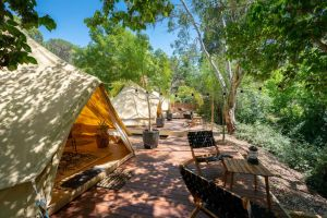 Castlemaine Gardens Luxury Glamping - South Australia Travel