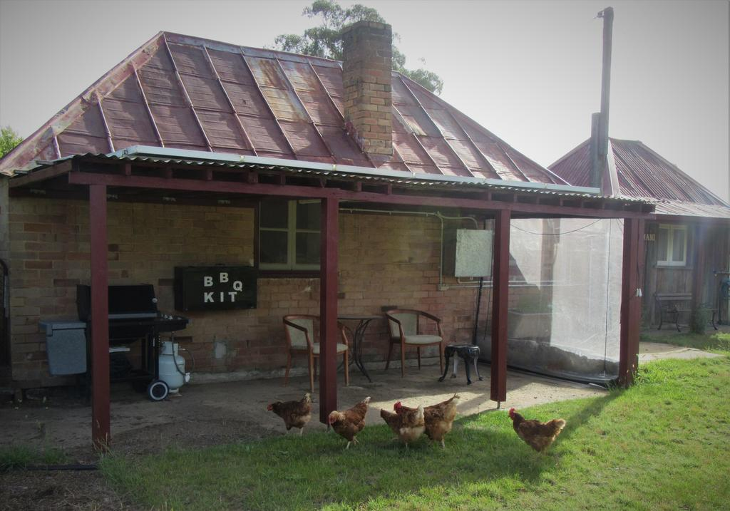 Fernbrook Cottage - South Australia Travel