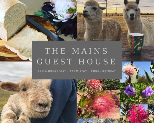 The Mains Guest House - South Australia Travel
