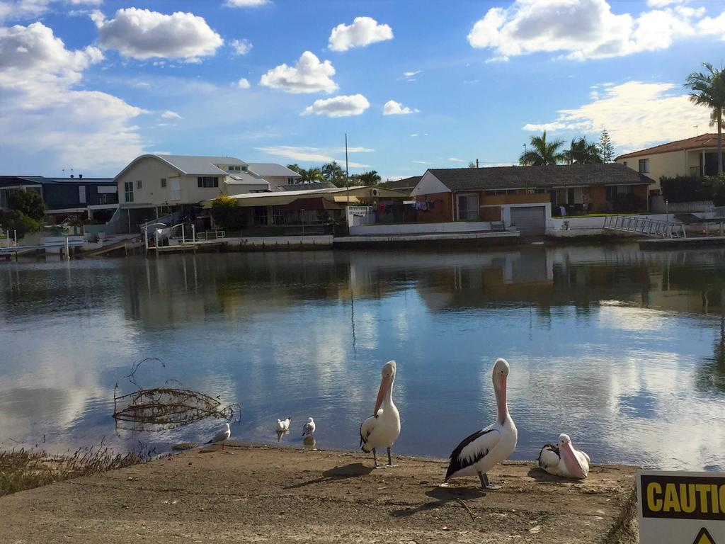 Pelican Cove Apartments - South Australia Travel