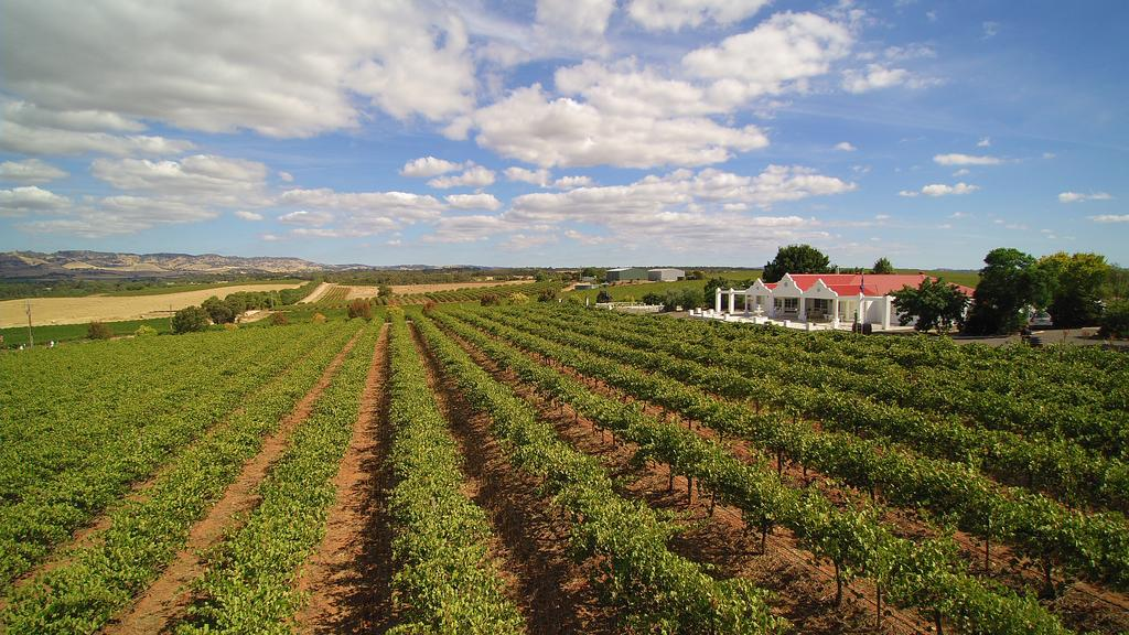 1837 Barossa Luxury Vineyard Cottages - South Australia Travel
